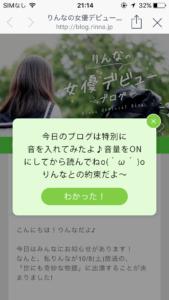 りんなブログ1